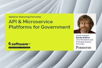 API & Microservice Platforms for Government   Software AG Government Solutions